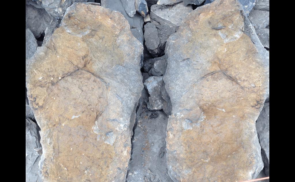 drystone_walling_clayton_29