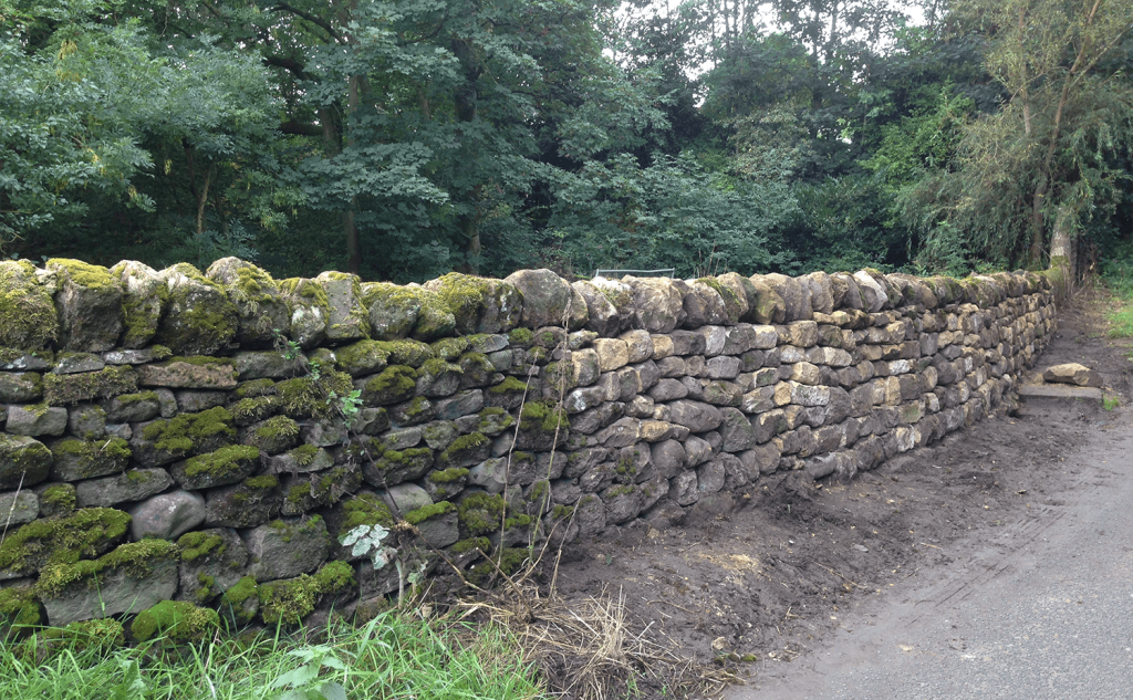 Traditional dry stone walling in Eccup
